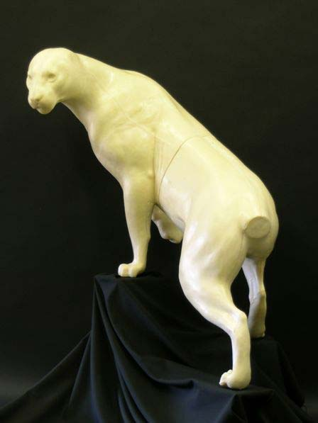 life size cougar form #905